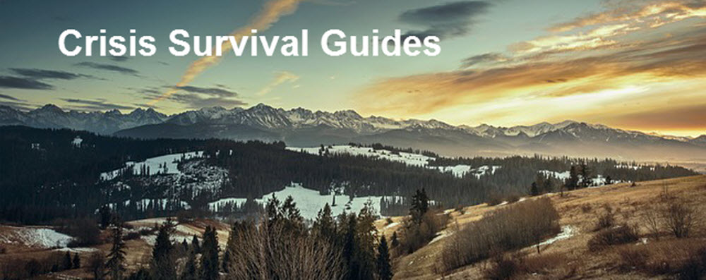 Crisis Suvival Guides